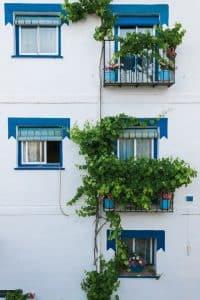 Outside Windows